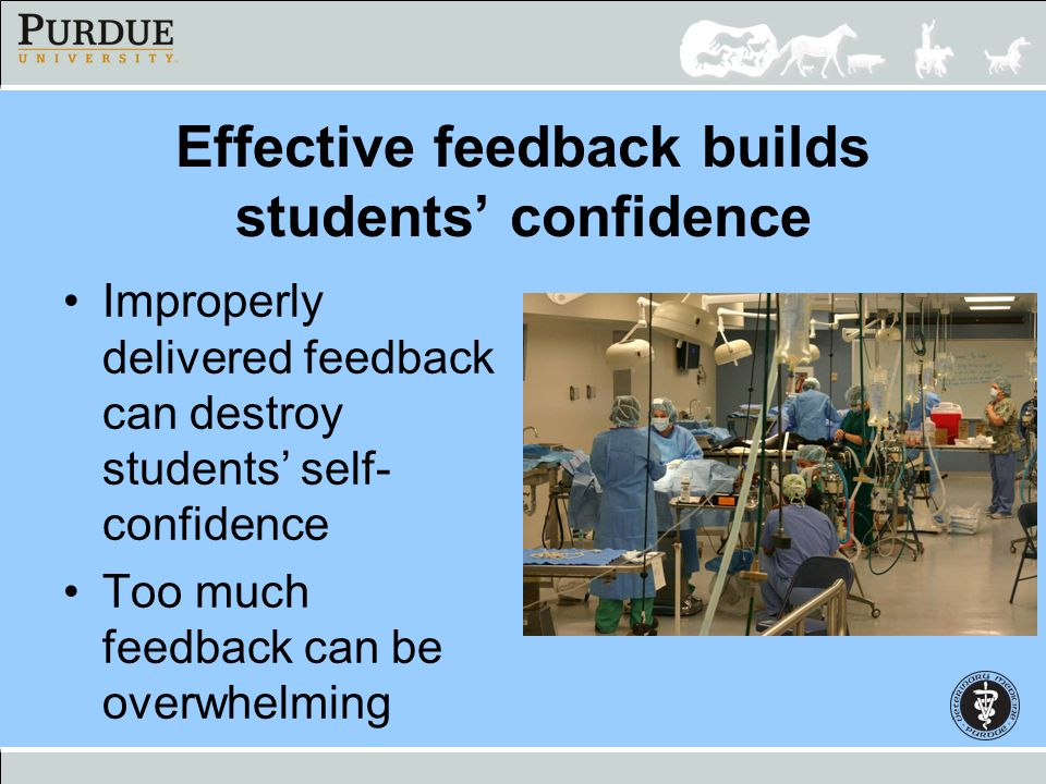 Effective feedback builds students' confidence