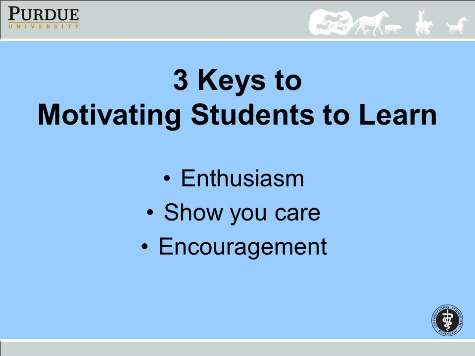 3 Keys to Motivating Students to Learn