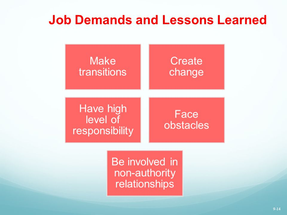 Job Demands and Lessons Learned