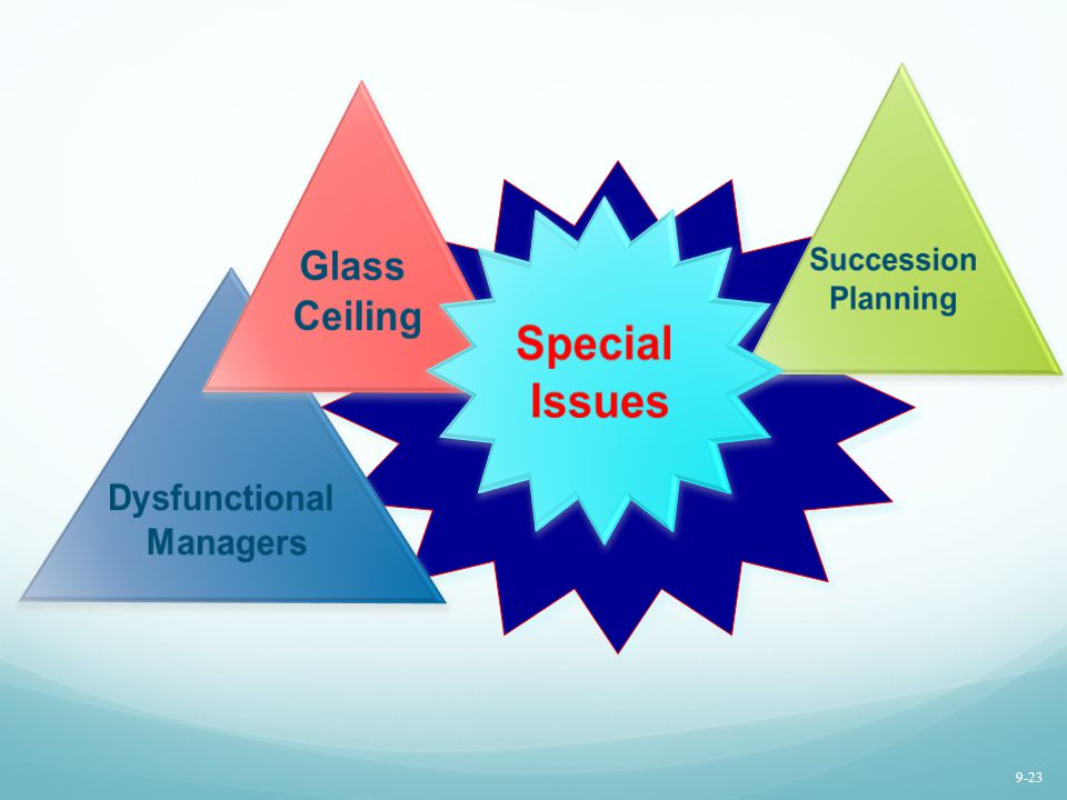 Special Issues Glass Ceiling Dysfunctional Managers Succession