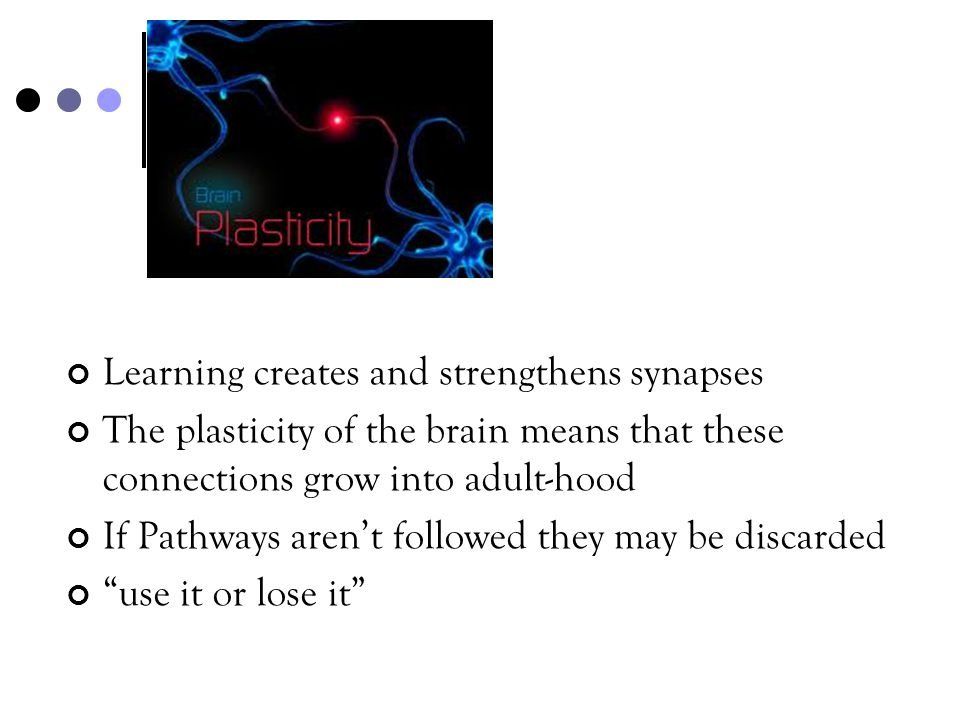 Plasticity Learning creates and strengthens synapses