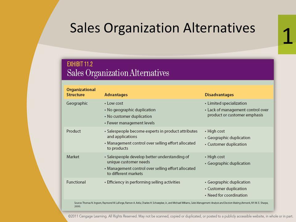 Sales Organization Alternatives
