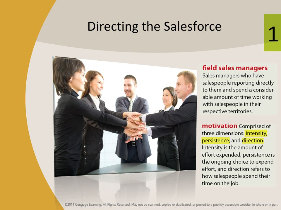 Directing the Salesforce