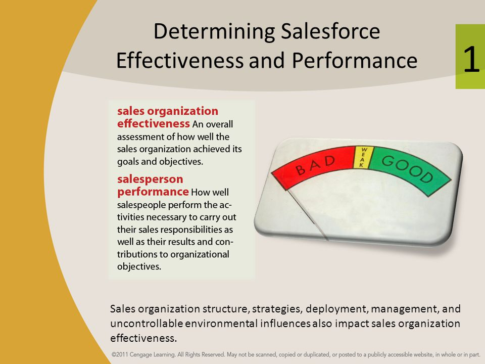 Determining Salesforce Effectiveness and Performance