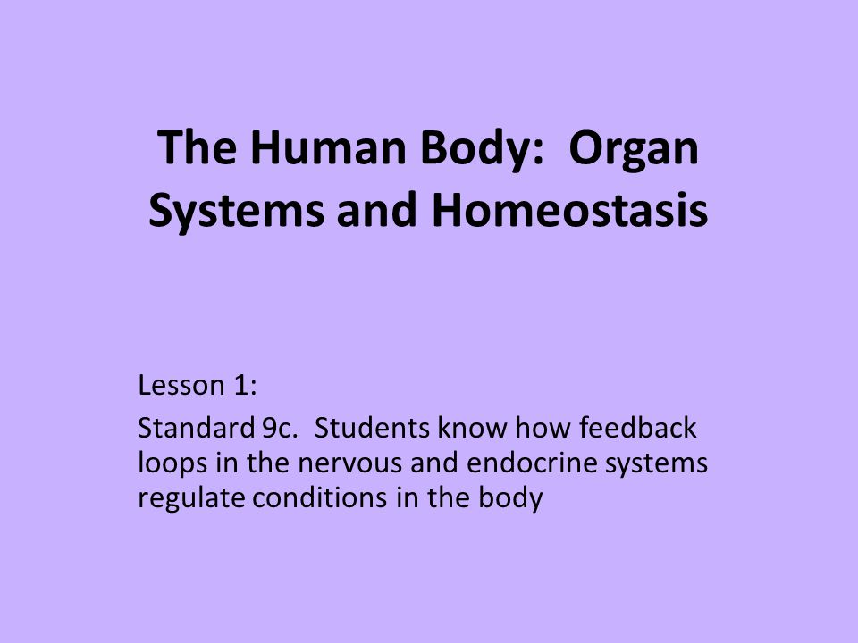 The Human Body: Organ Systems and Homeostasis
