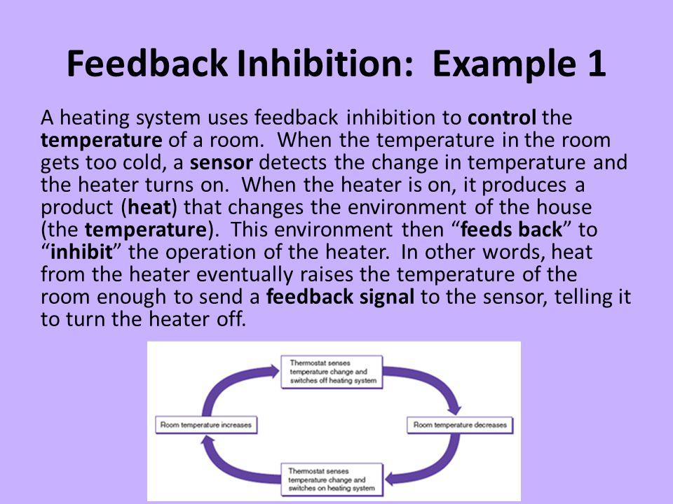 Feedback Inhibition: Example 1