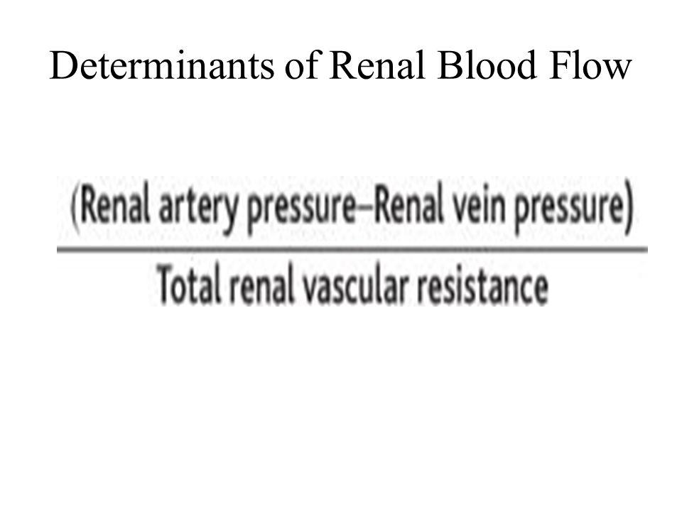 Determinants of Renal Blood Flow