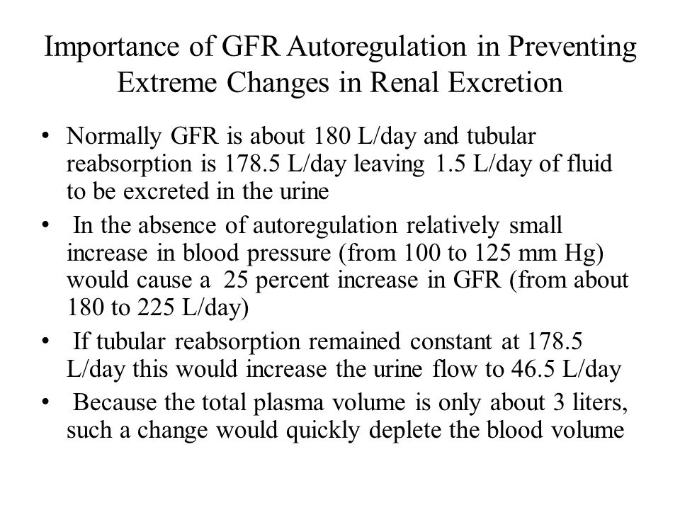 Importance of GFR Autoregulation in Preventing Extreme Changes in Renal Excretion