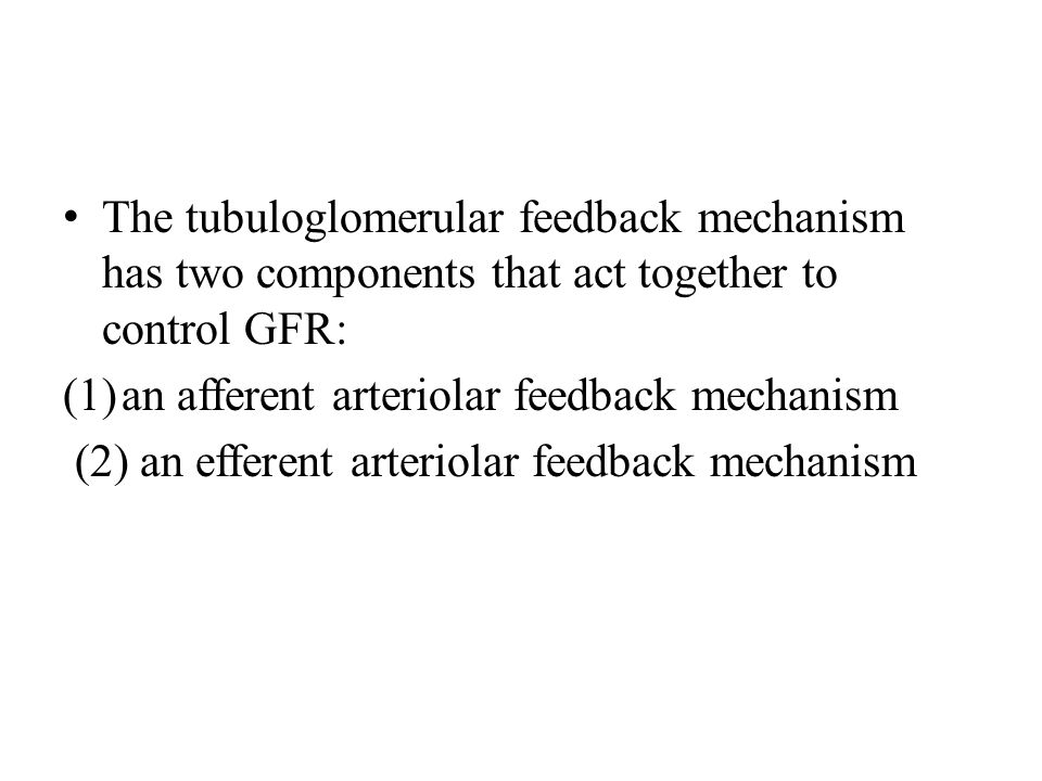 The tubuloglomerular feedback mechanism has two components that act together to control GFR: