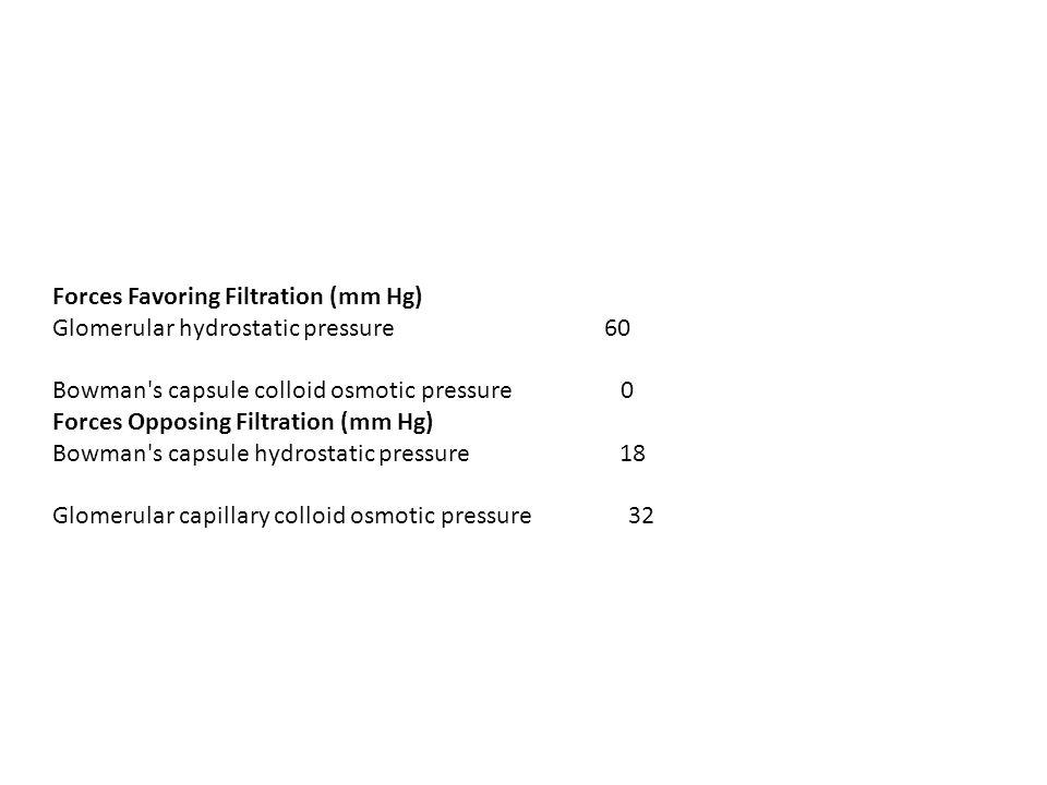 Forces Favoring Filtration (mm Hg)