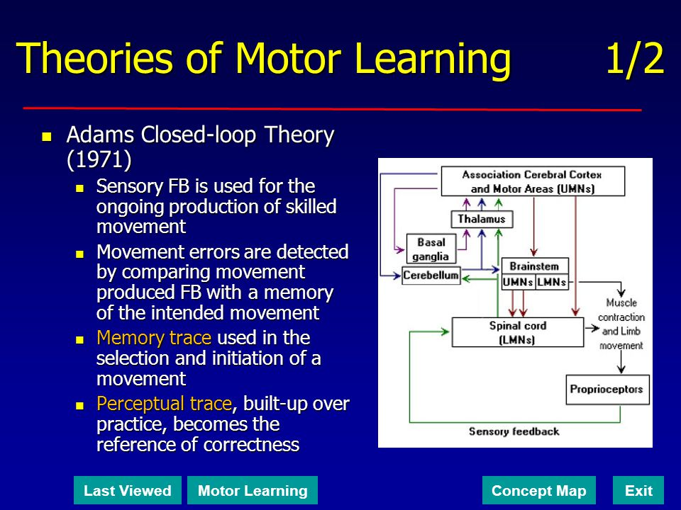 Theories of Motor Learning 1/2
