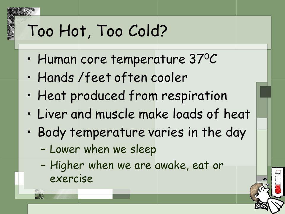 Too Hot, Too Cold Human core temperature 370C