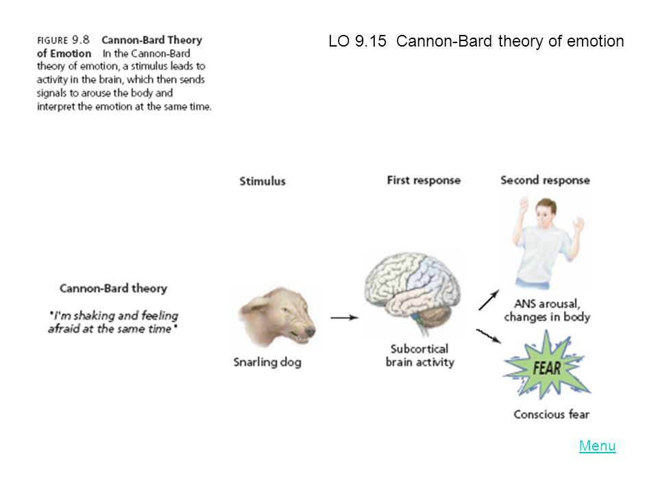 LO 9.15 Cannon-Bard theory of emotion