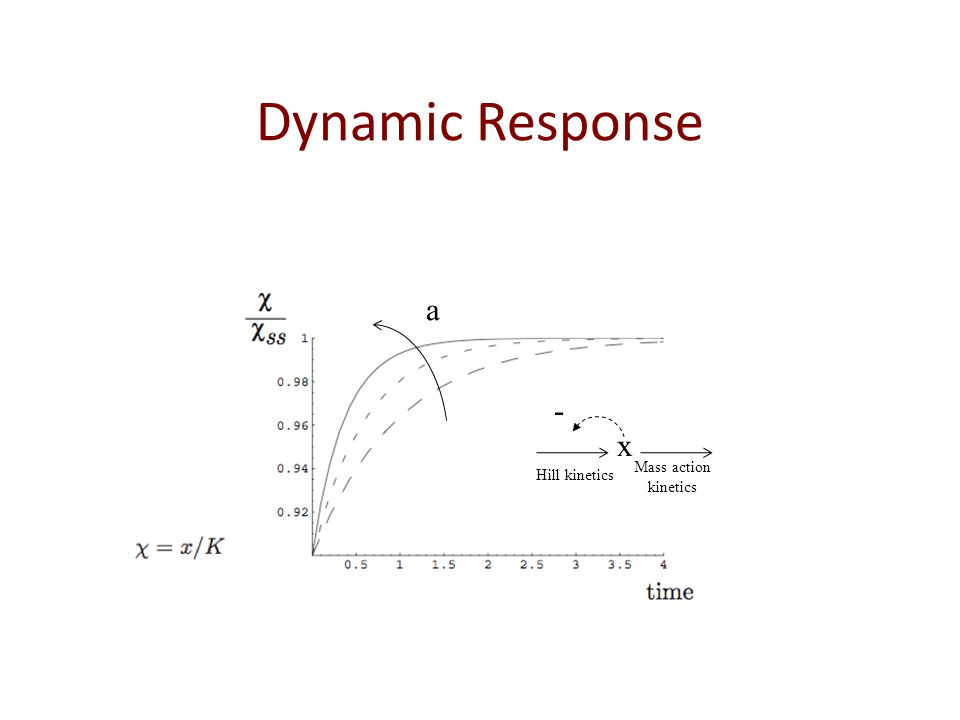 Dynamic Response a - x Mass action kinetics Hill kinetics