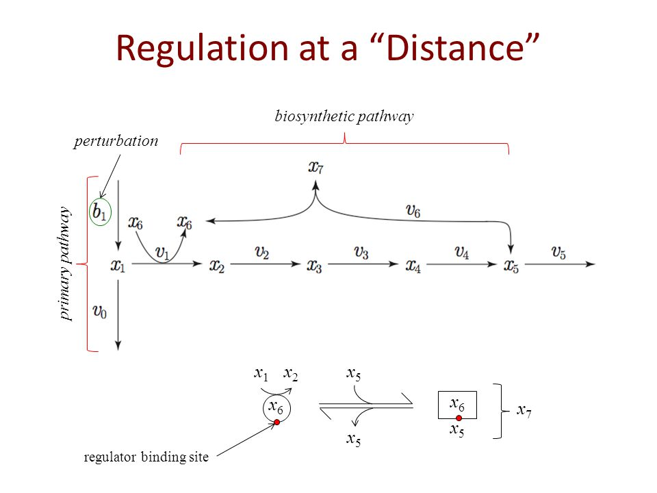 Regulation at a Distance