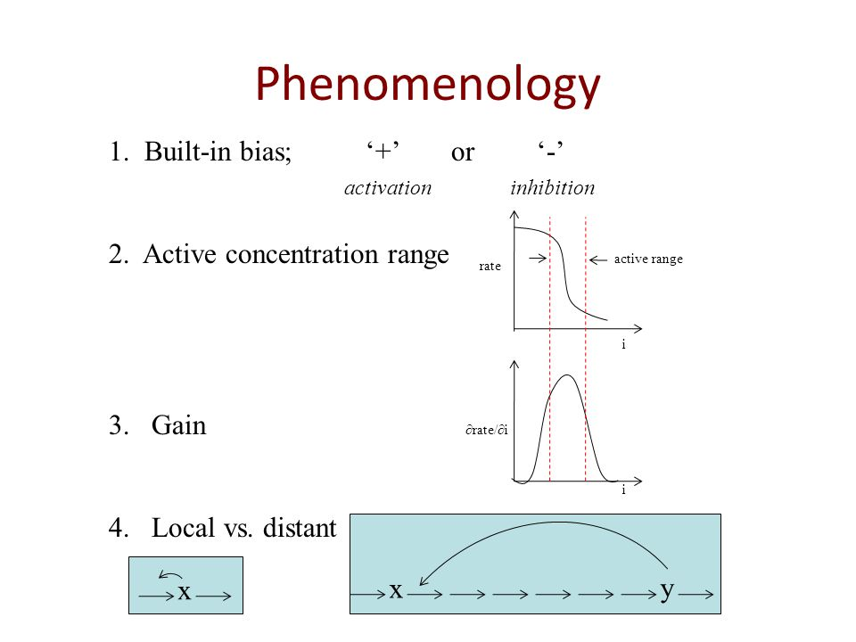 Phenomenology 1. Built-in bias; '+' or '-' activation inhibition