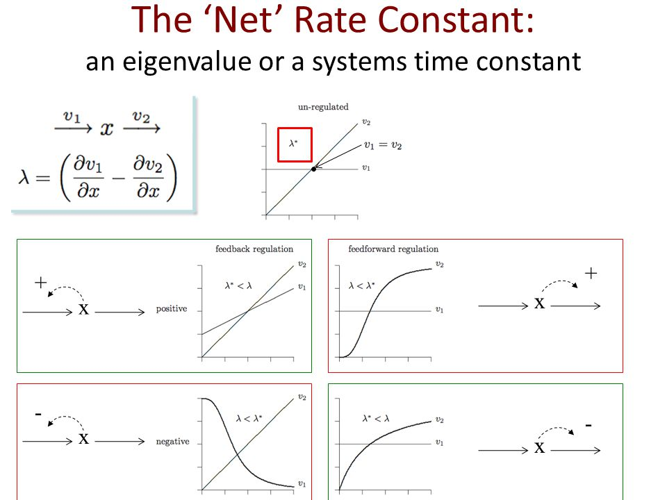 The 'Net' Rate Constant: