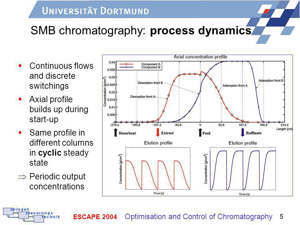 SMB chromatography: process dynamics