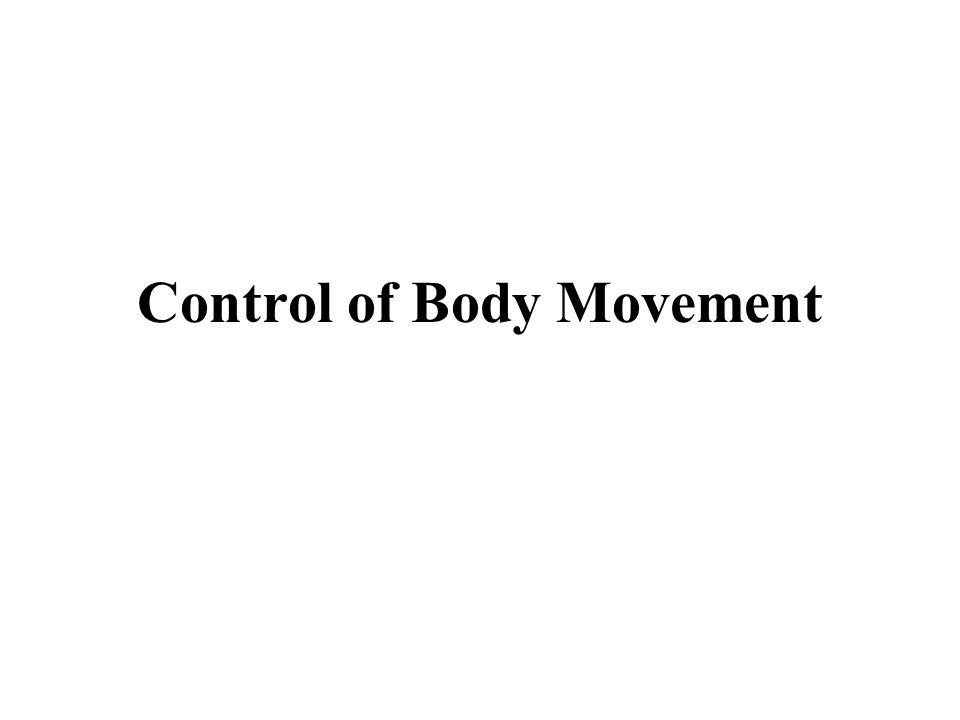 Control of Body Movement