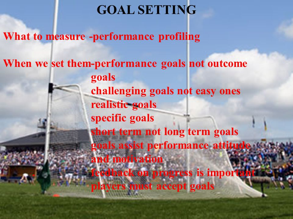GOAL SETTING What to measure -performance profiling