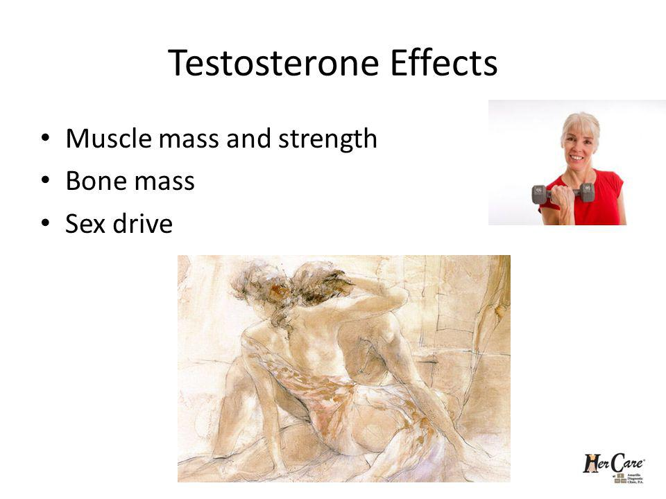 Testosterone Effects Muscle mass and strength Bone mass Sex drive