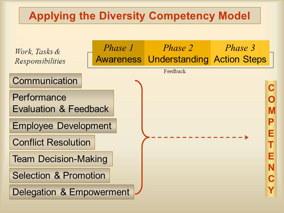 Applying the Diversity Competency Model