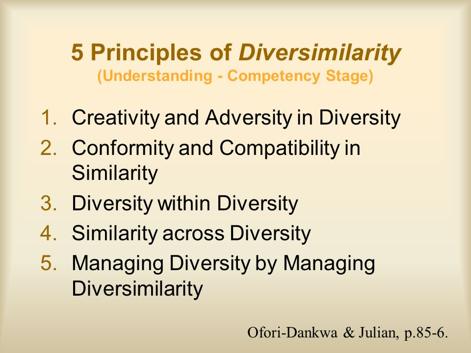 5 Principles of Diversimilarity (Understanding - Competency Stage)