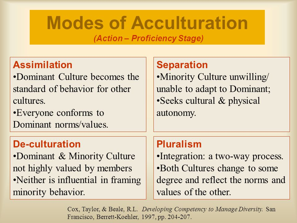 Modes of Acculturation (Action – Proficiency Stage)