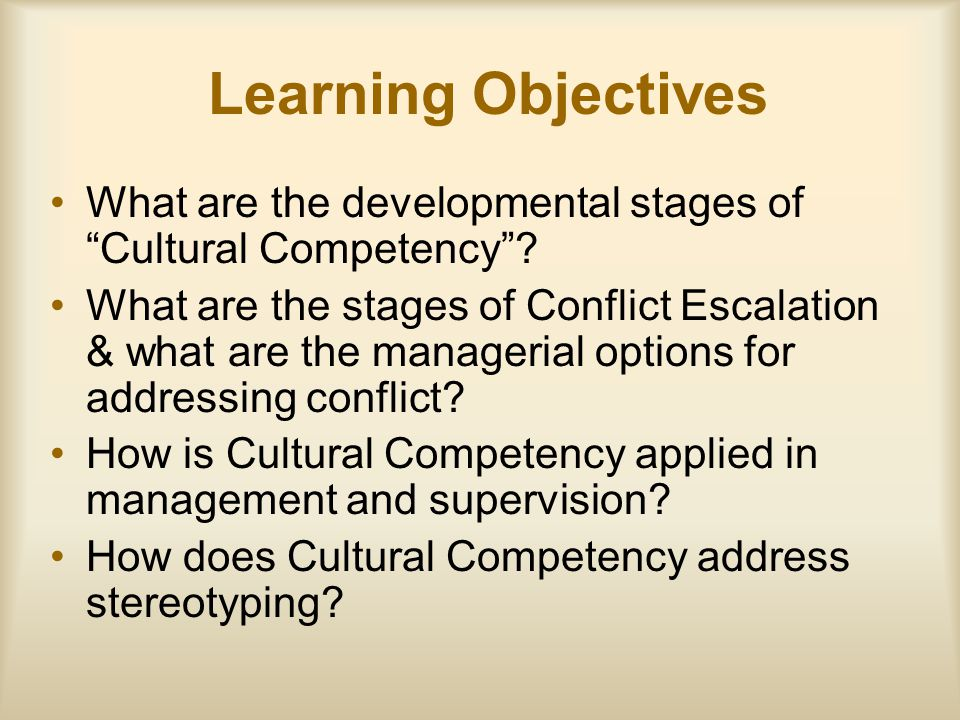 Learning Objectives What are the developmental stages of Cultural Competency