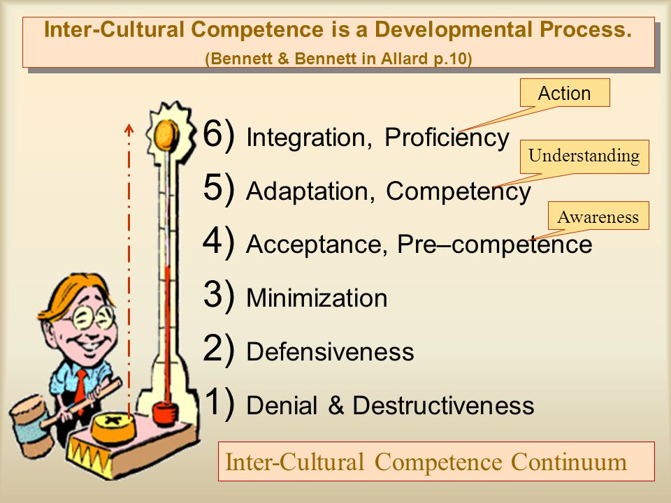 6) Integration, Proficiency 5) Adaptation, Competency