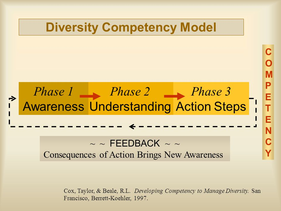 Diversity Competency Model