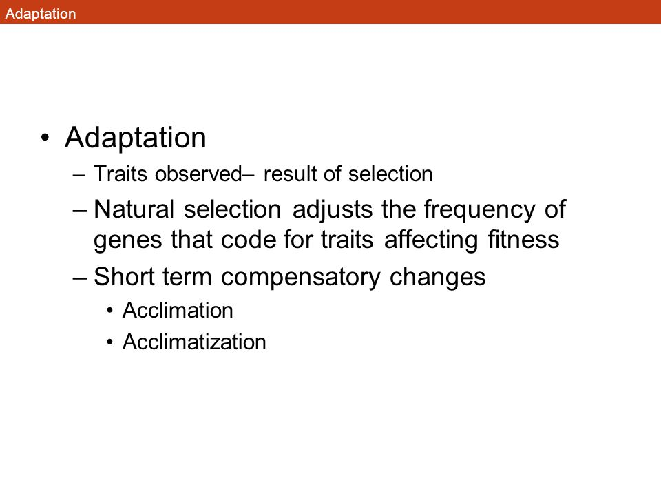 Adaptation Adaptation. Traits observed– result of selection.
