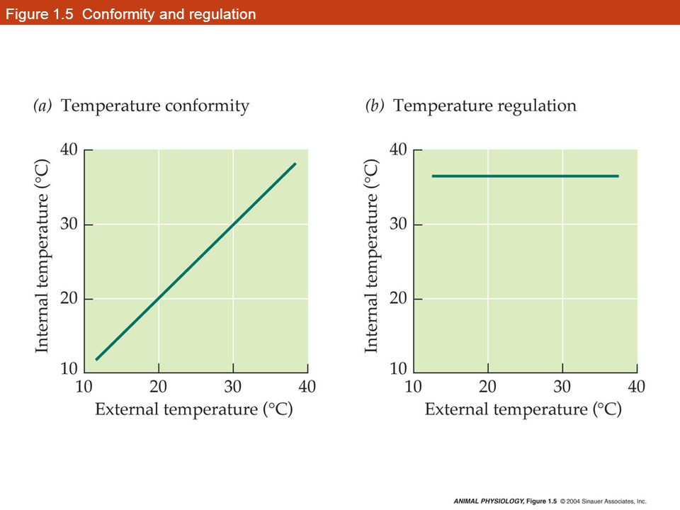 Figure 1.5 Conformity and regulation