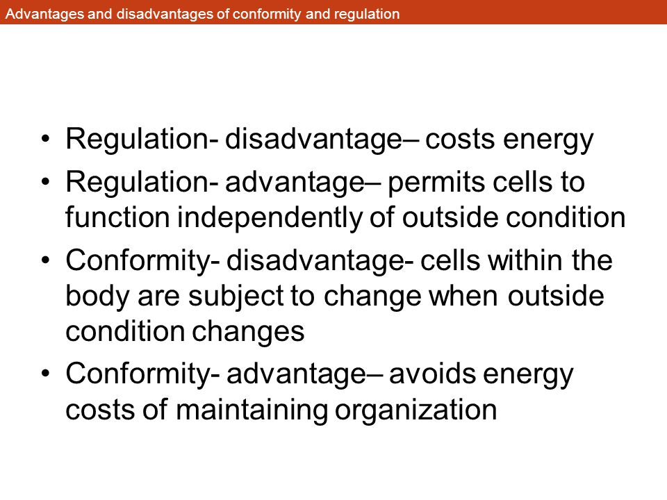Advantages and disadvantages of conformity and regulation