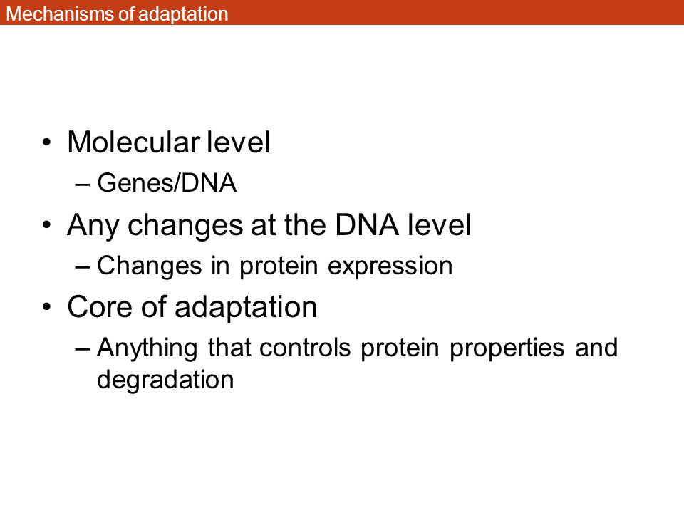 Mechanisms of adaptation