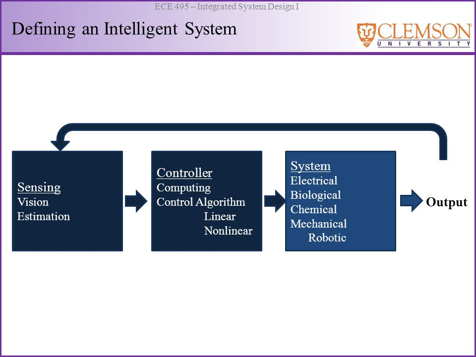 Defining an Intelligent System