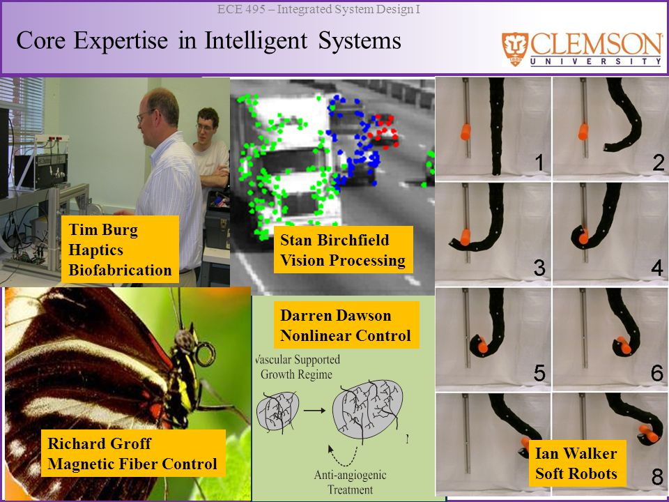Core Expertise in Intelligent Systems