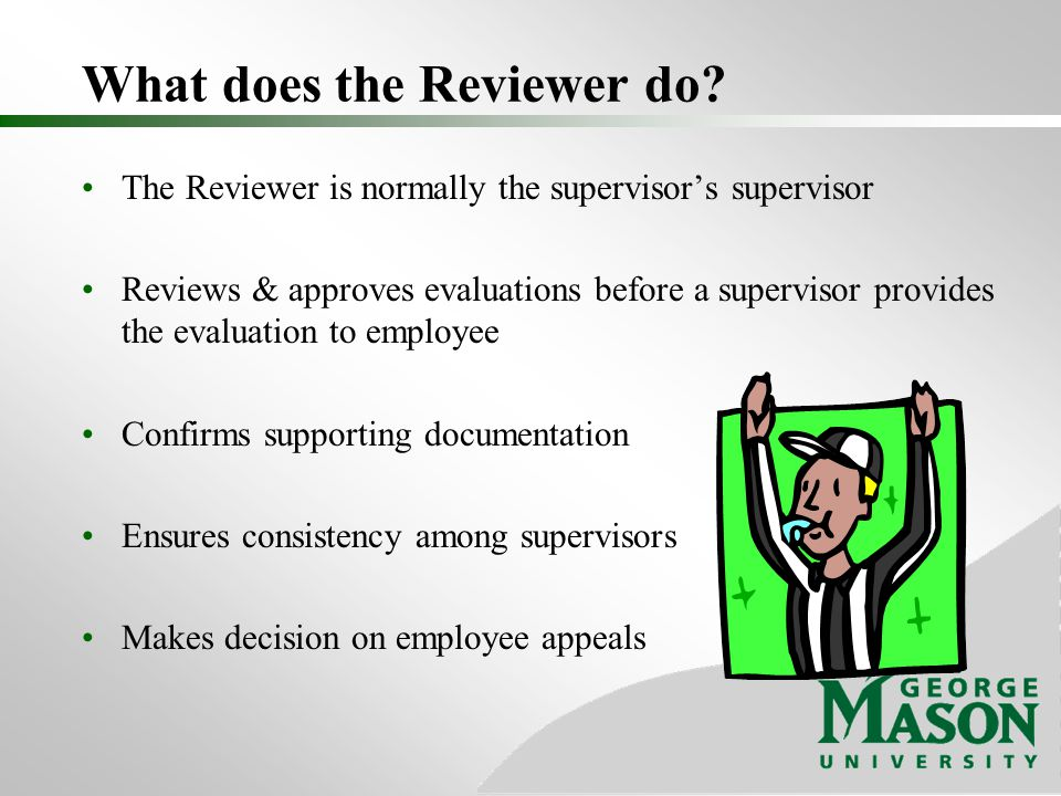 What does the Reviewer do