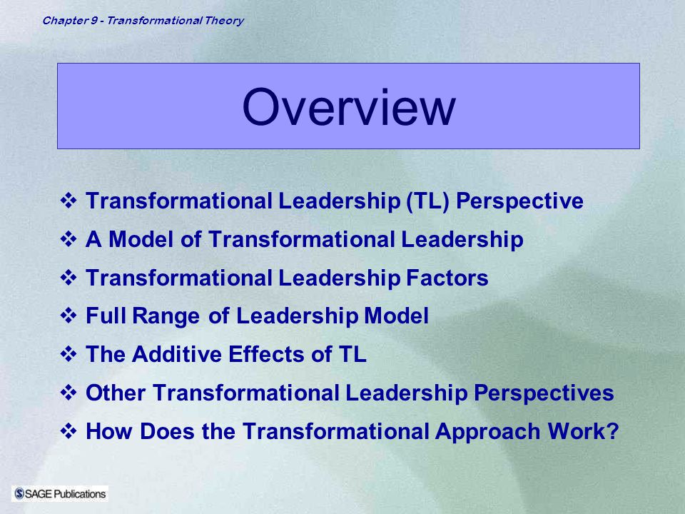 Overview Transformational Leadership (TL) Perspective