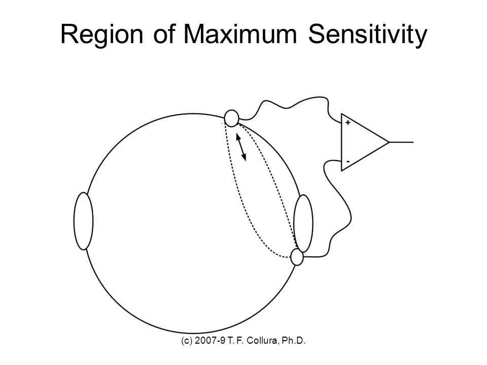 Region of Maximum Sensitivity