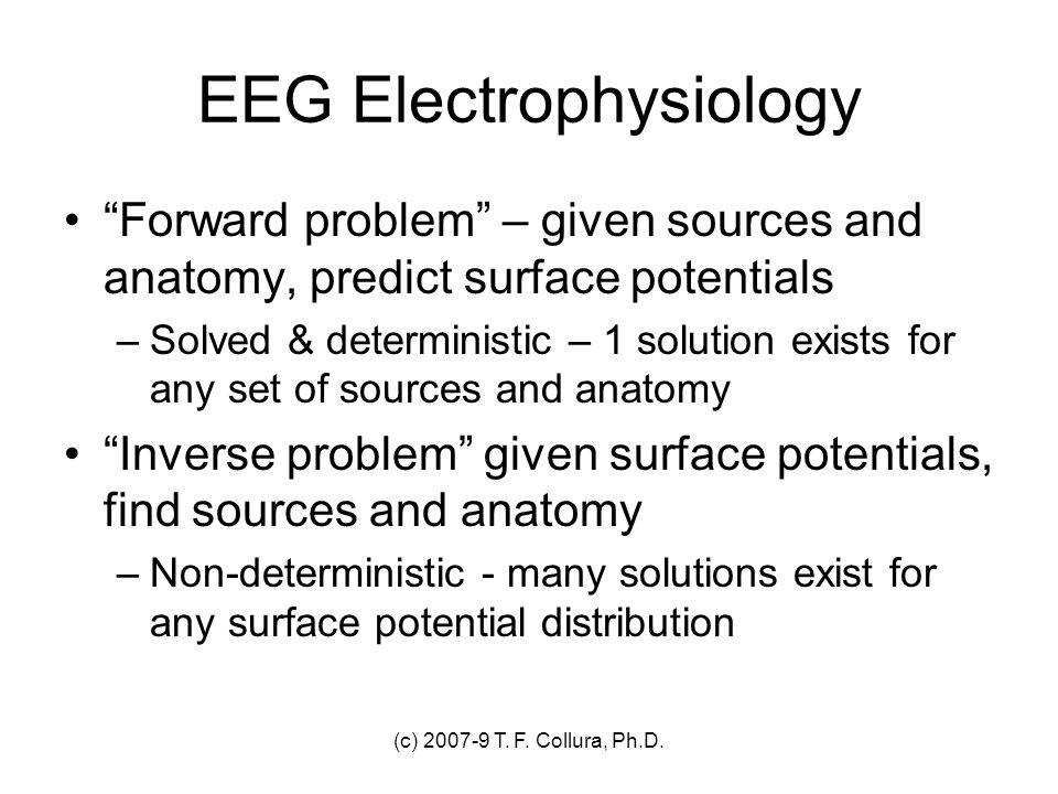 EEG Electrophysiology