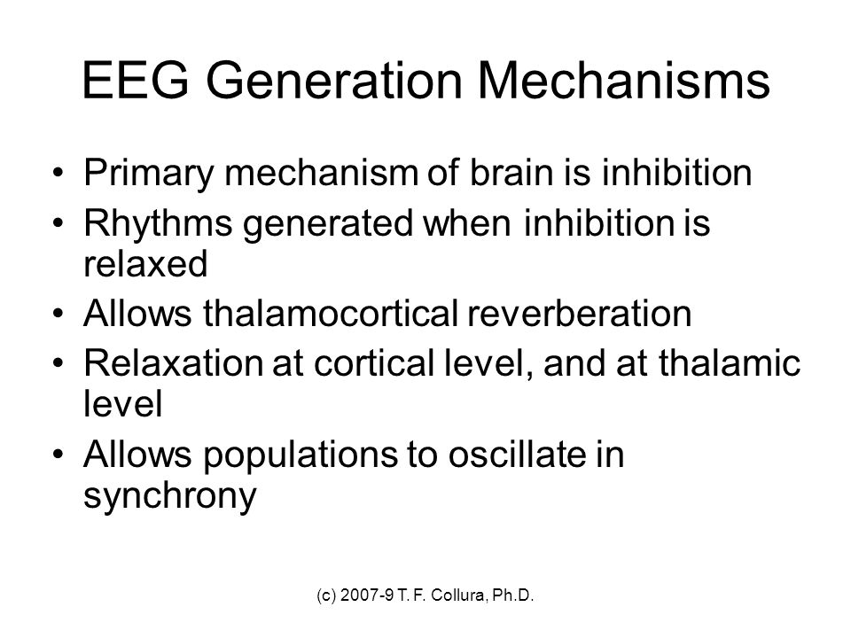 EEG Generation Mechanisms