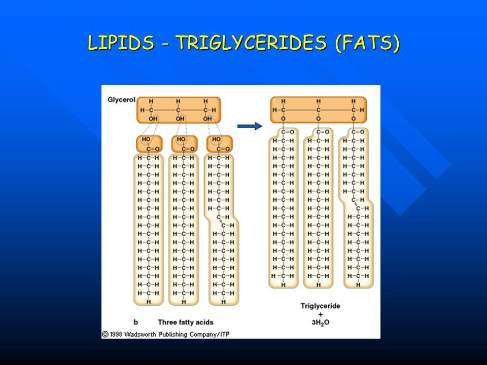 LIPIDS - TRIGLYCERIDES (FATS)