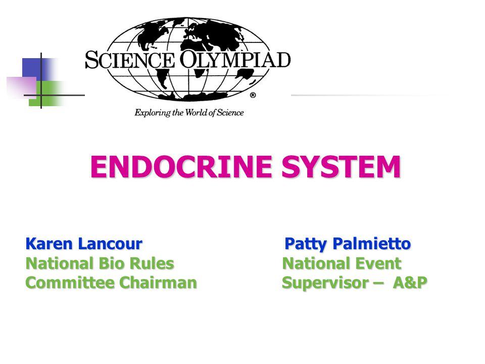 ENDOCRINE SYSTEM Karen Lancour Patty Palmietto