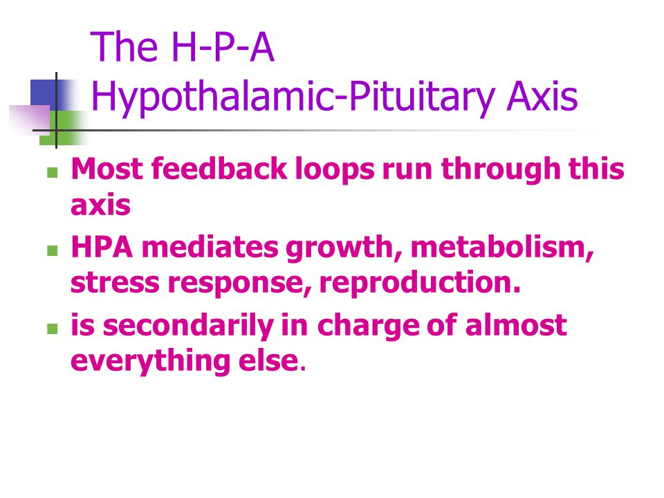 The H-P-A Hypothalamic-Pituitary Axis