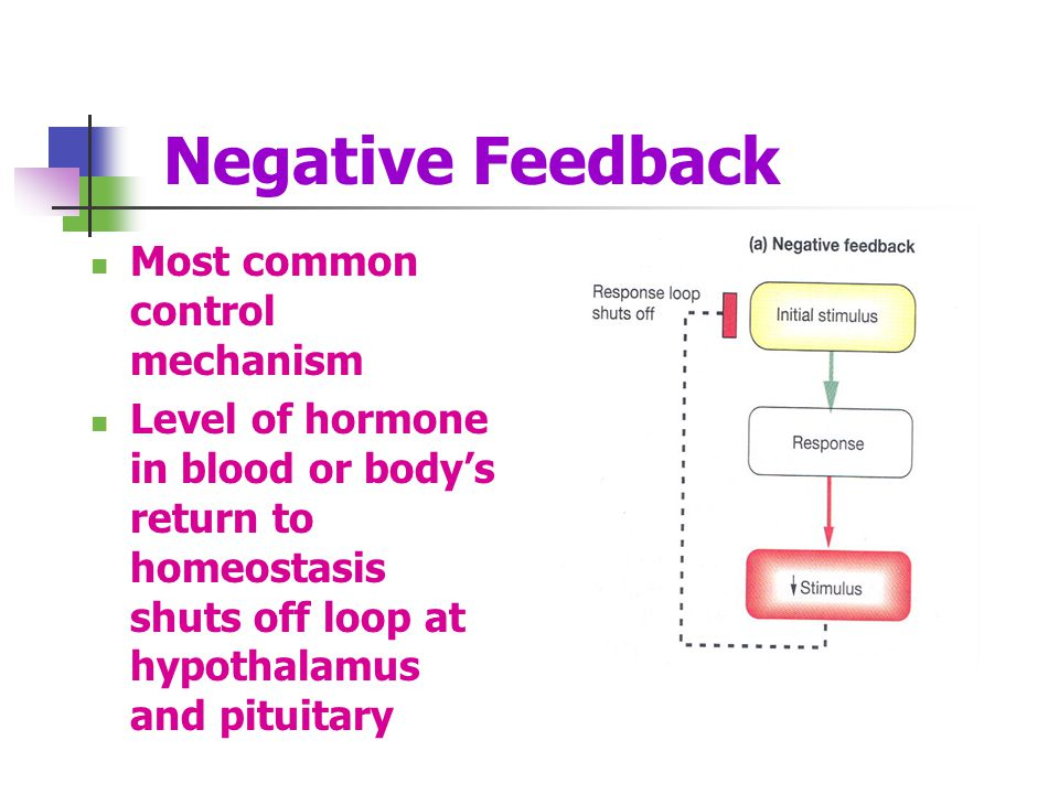 Negative Feedback Most common control mechanism