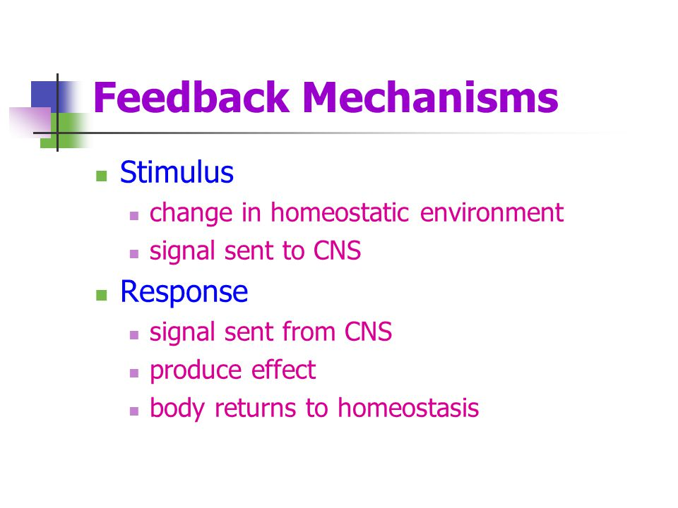 Feedback Mechanisms Stimulus Response