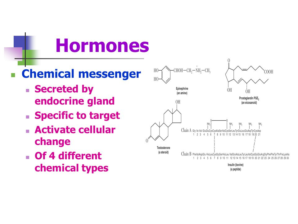 Hormones Chemical messenger Secreted by endocrine gland