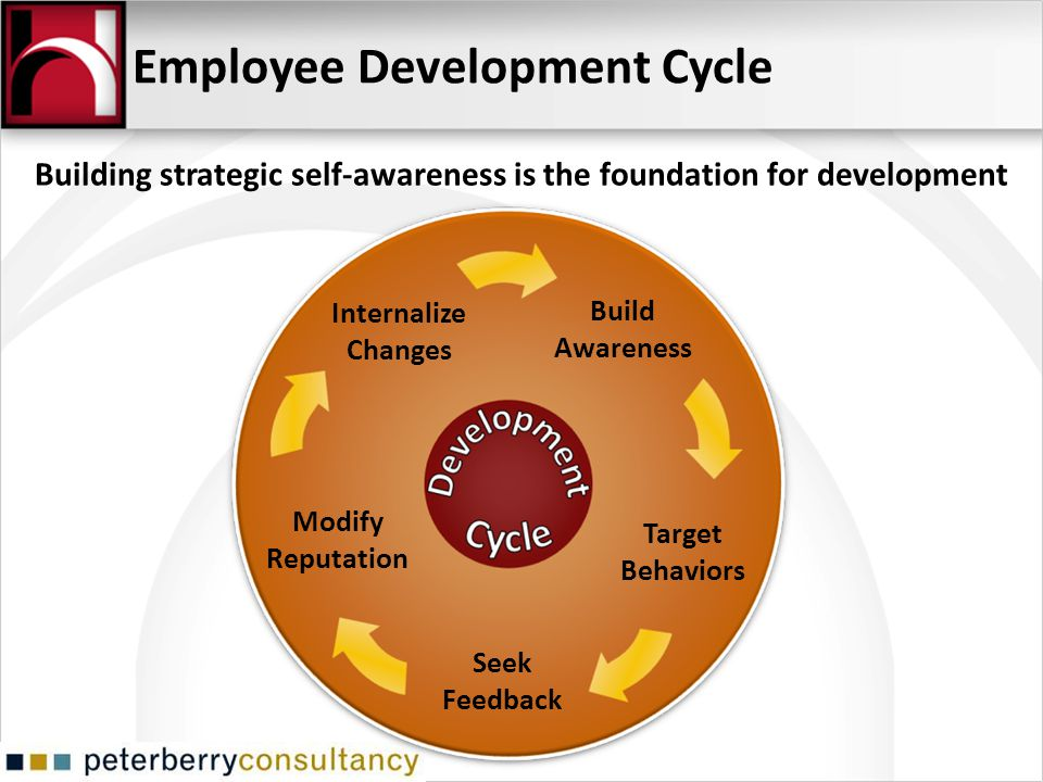 Employee Development Cycle