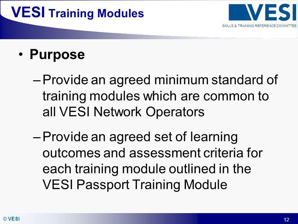 VESI Training Modules Purpose